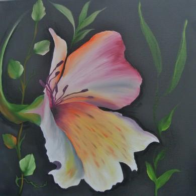 Inka - Lily, Jenkins Art