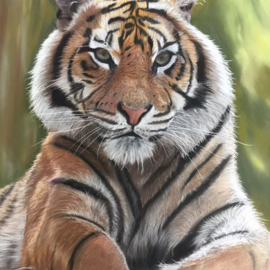 Tiger in Pastell